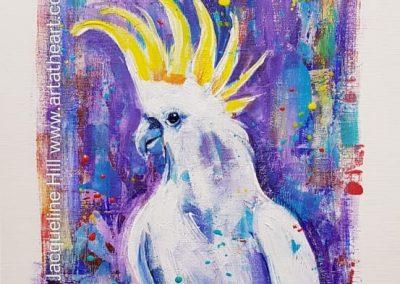DA249 Cocky Fella (Sulphur-crested cockatoo)