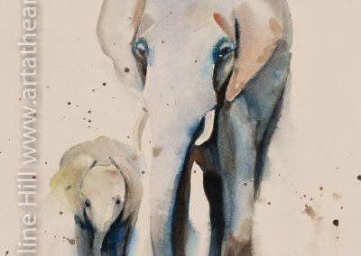 DA128 Elephant Walk