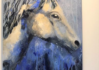 Horse by Fiona Ormiston
